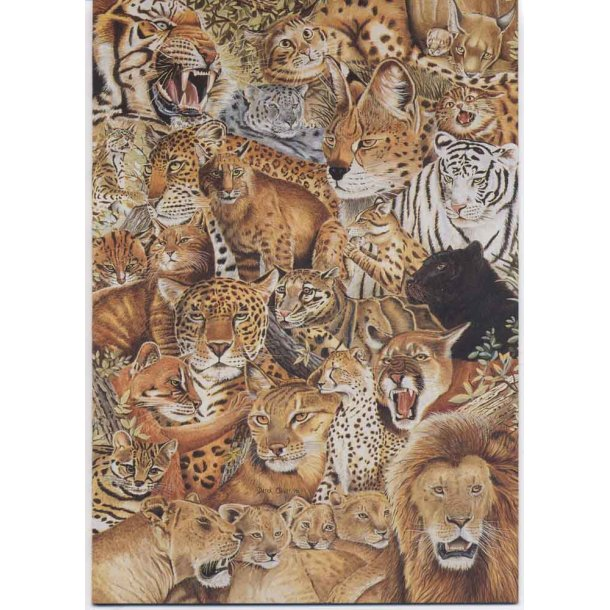 Dobbelt kort<br>Wild Cats