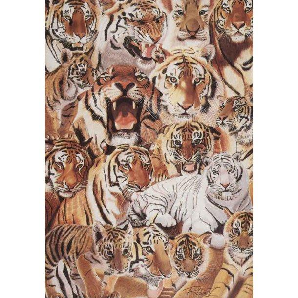 Dobbelt kort<br>Tiger Parade