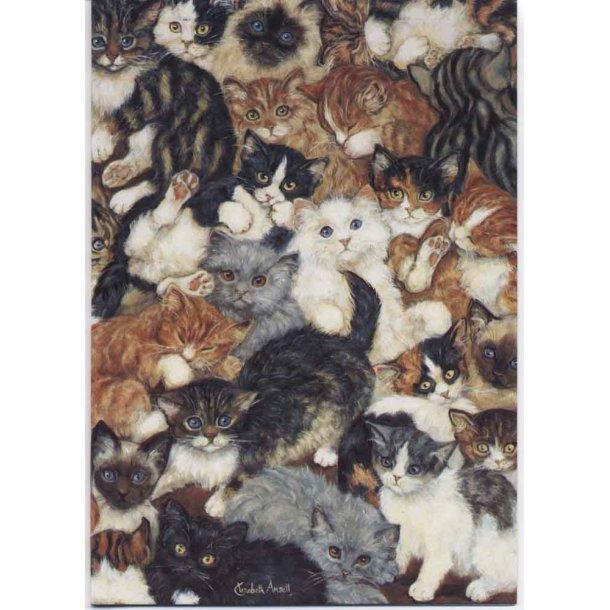 Dobbelt kort<br>Kitten World