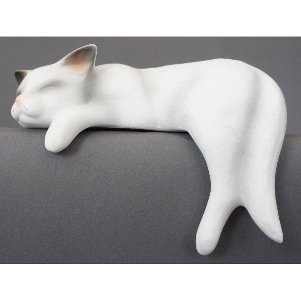 Sovende hvid kat