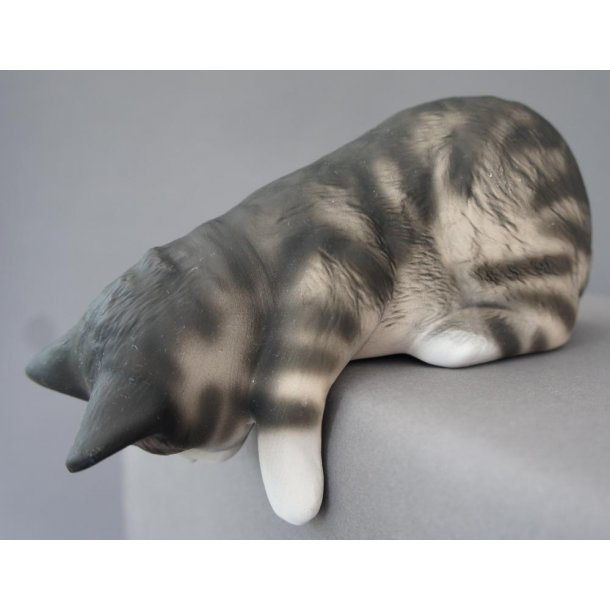 Stor grå/sort nysgerrig kat