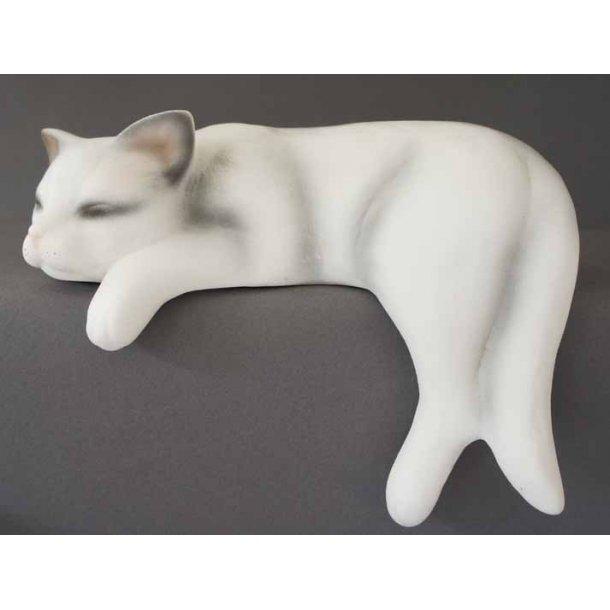 Stor hvid sovende kat