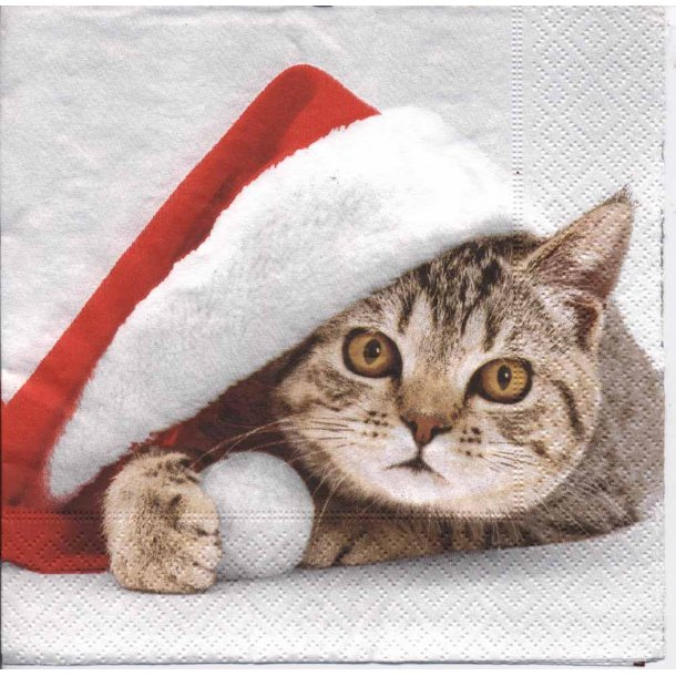 Sweet Santa Cat juleserviet