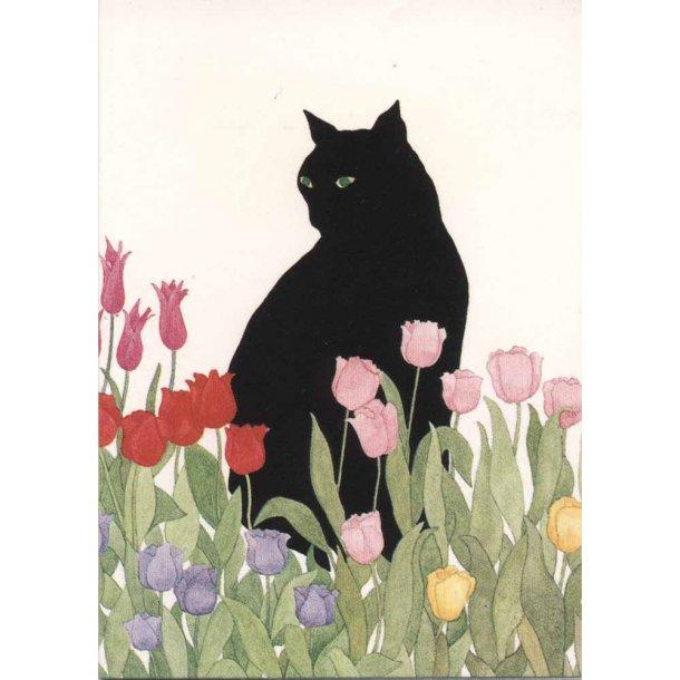 Kat og tulipaner