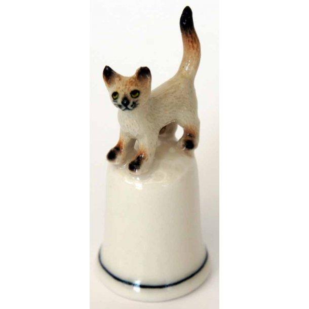 Lys kat<br>står på fingerbøl