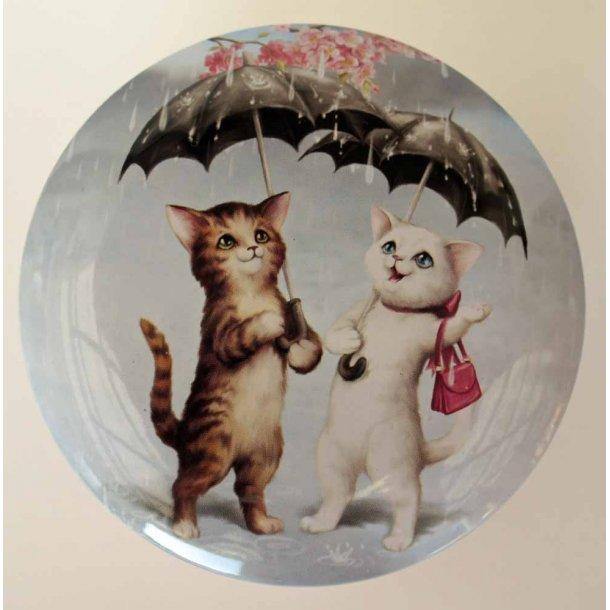 Raining Cats dåse