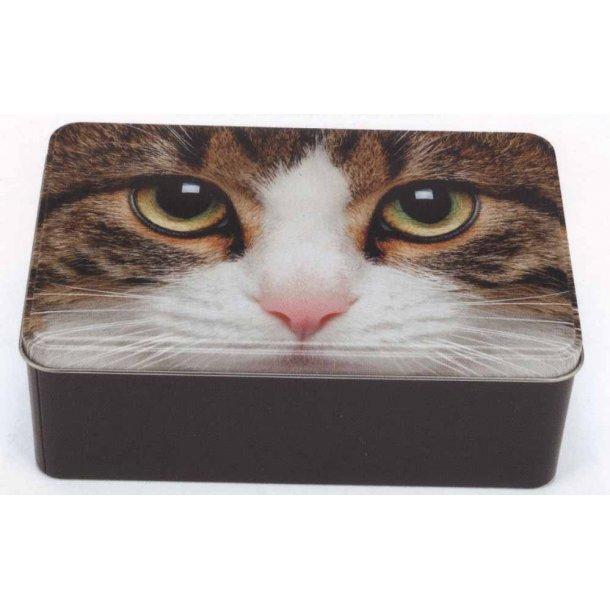 Tabby Cat smykkeskrin