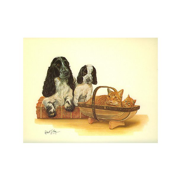 Kattekort-med-hund<br>Sæt med 2 stk