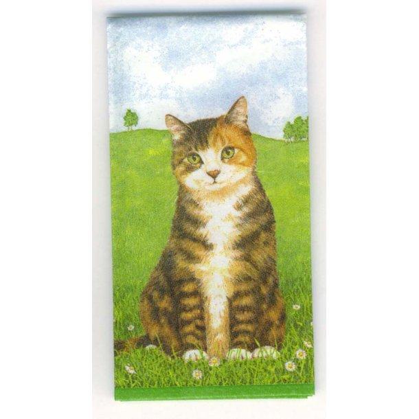Papirlommetørklæde<br>Cats Mix