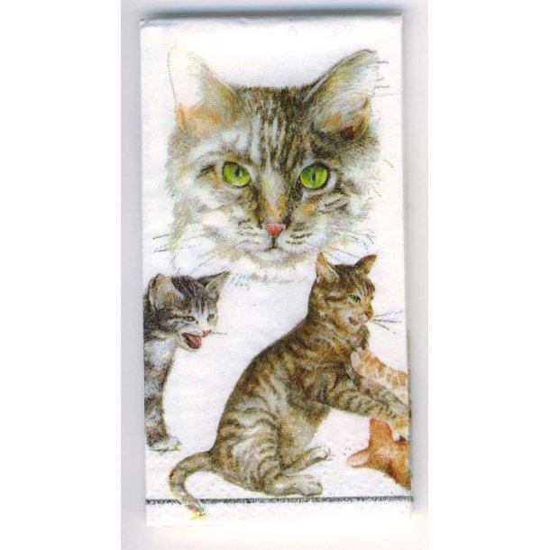 Papirlommetørklæde<br>Cats Life