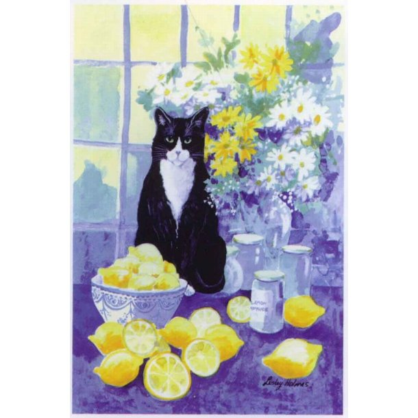 Lemon cat - viskestykke<br>Design: Lesley Holmes
