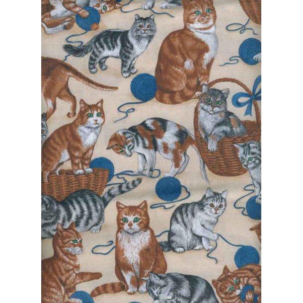 Katte med blå garnnøgler