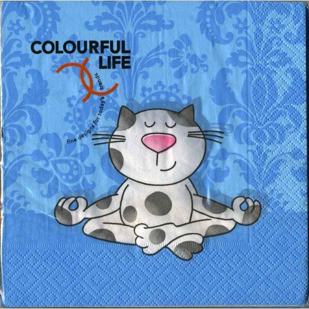 Yoga Cat lunchserviet
