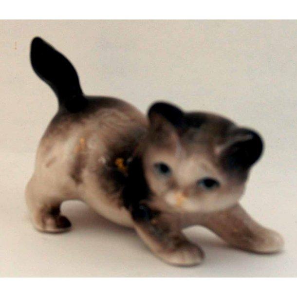 Sam -<br>Lille beige/brun kat