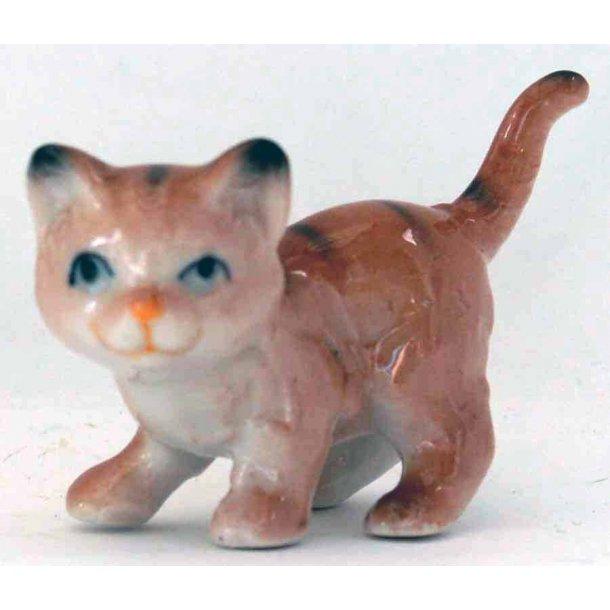 Sammy -<br>Gylden mini-kat