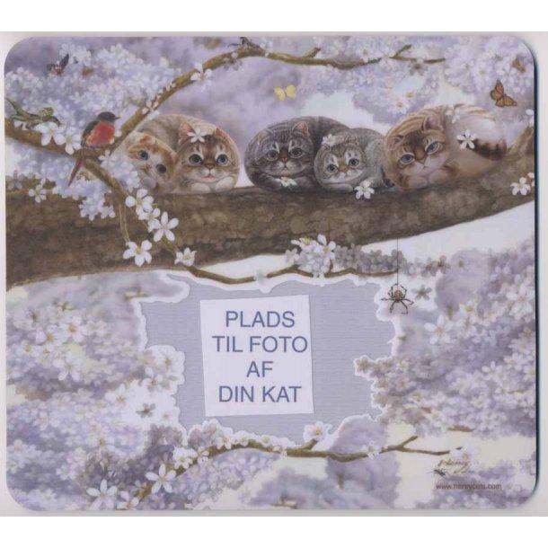 Katte-musemåtte<br>og fotoramme