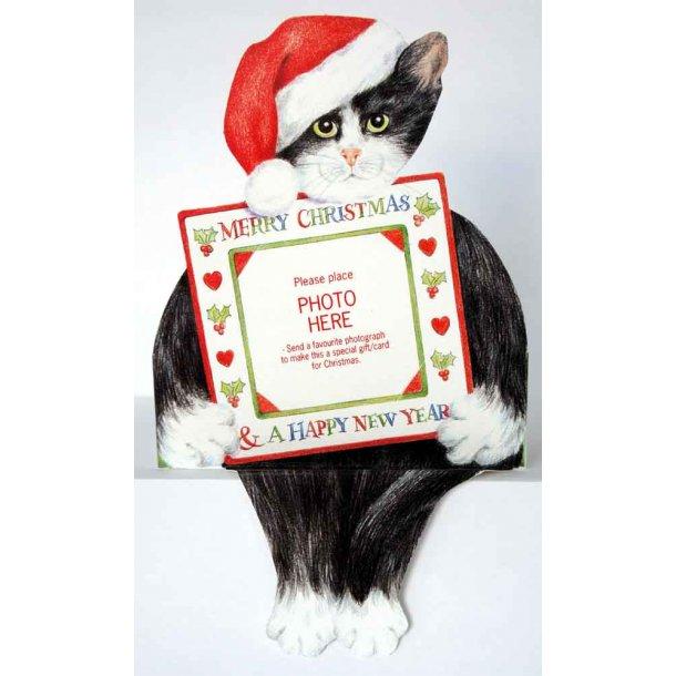 Selvsiddende katte-julekort<br> med plads til foto